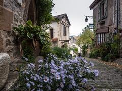 Cordes sur Ciel (cvielba) Tags: francia calles cordes casastipicas