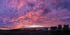 paint bomb (devwild) Tags: bridge oregon sunrise portland wide panoramic 6d ohsu canon40mmf28