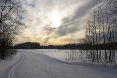 Погода для лыжных соревнований идеальна!