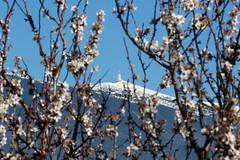 Mont Ventoux 3P6A8531 (Ludo_M) Tags: mountain france canon landscape eos spring europe paca mount 7d provence printemps markii vaucluse ventoux montventoux ef70200mmf28lisiiusm canoneos7dmarkii