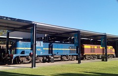 1950s  diesel locomotives (ajat18) Tags: montreal picton alco thirlmere rtm 4001 4306 nswgr nswr thnsw
