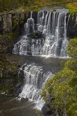Ebor Falls (Geoffsnaps) Tags: water river 50mm bush nikon f14 g 14 tripod rocky australia falls rapids newsouthwales carbon nikkor fx gp afs steep acratech ballhead dorrigo ebor eborfalls 14g f14g d810 induro nikond810 bielsdownriver acratechgpballhead nikonnikkor50mmf14gafs bielsdown ct414 induroct414carbontripod