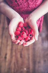(Rebecca812) Tags: red people food detail vertical fruit canon holding hands lace harvest raspberry organic copyspace plenty wholesome healthylifestyle rebecca812