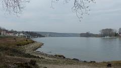 Rhein bei Oppenheim