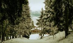 Combloux, lomography, 5 (Patrick.Raymond (2M views)) Tags: france montagne xpro lomography nikon neige savoie haute expressyourself alpas comblox