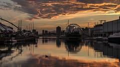 Genoa port (Enrico Cusinatti) Tags: sunset sea italy italia tramonto mare genoa genova oldport biosfera portoantico enricocusinatti