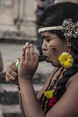 tribo TUXA_Rosilda_Cruz (49) (rosilda_cruz) Tags: cultura indgena histriadobrasil diadondio culturaindgena culturabaiana rosildacruz wwwculturabaianacombr mculturais diversidadedaculturaindgena