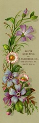 Easter Greeting Bookmark, ca. 1880 (Alan Mays) Tags: old flowers green philadelphia vintage ads paper easter advertising cards holidays purple pennsylvania antique 19thcentury victorian violet illustrations ephemera pa bookmarks greetings advertisements printed companies chestnutstreet 8thstreet nineteenthcentury greetingcards 1880s eighthstreet tradecards eastercards fleischner pfleischnerco pfleischner