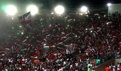 Flu x Palmeiras CB 21.10.2015 (Fluminense F.C.) Tags: bandeira bandeiras bandeirinhas torcedor torcendo