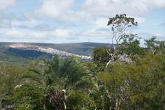 Parte de Caetit vista da Pedra Redonda (alcesterdiego) Tags: brasil flora bahia pedra redonda serto caatinga semirido caetit