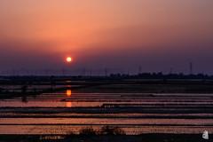 Sunrise (TungShing) Tags: morning sunshine sunrise landscape nikon     d7100