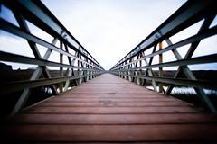 Sleep (Thomas Hawk) Tags: bridge marin marinheadlands fav10 fav25 photowalking rodeolagoon photowalking100907 photowalking10092007