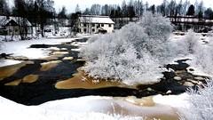 Rapid Vantaankoski (Vantaa, 20160109) (RainoL) Tags: winter snow cold finland river geotagged vantaanjoki frost january vanda fin rapid vantaa 2016 uusimaa nyland vantaankoski 201601 vanda vandaforsen fz200 20160109 geo:lat=6029366872 geo:lon=2486600338