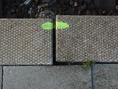 Found Platform Face (mkorsakov) Tags: yellow paint neon platform bahnhof gelb foundface farbe hbf dortmund gleis szenerie rechtecke