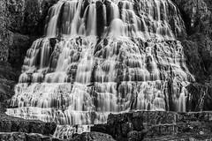 Der Schleierhafte (Panasonikon) Tags: iceland island wasserfall waterfall dynjandi westfjorde bw lzb nikond5100 nikkor55300 lieblingsort panasonikon explore sw