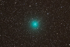 Linear 252P (Seabird NZ) Tags: newzealand canterbury astrophotography astronomy stacking comet tracking equatorial linear astrophoto hurunui notail deepsky skywatcher waikari greenhalo sigma120300mmf28 pyramidvalley neq6 252p nikond810a linear252p