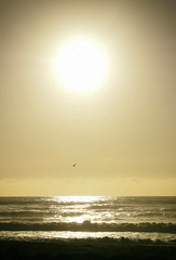 (M J Adamson) Tags: ocean sunset sea newzealand beach scenic nz tasmansea westcoast hokitika westcoastholiday2016