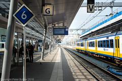 Station Utrecht centraal (peterpj) Tags: station nikon utrecht wandelen d800 geer lightroom6 drebergenzeist