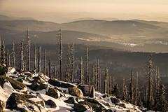 _MAK4838_2016_02_27_1-125 Sek. bei f - 8,0_60 mm_ISO 100 (Markus Kolar braucht kein Photoshop...aber Licht) Tags: schnee nationalpark landschaft wandern bayerischerwald 2016 lusen fotoblosn httpmarkuskolarblogspotde pentaxks2