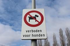 No dogs allowed! (Davydutchy) Tags: netherlands amsterdam march nederland paysbas niederlande nieuw 2016 slotervaart sloten