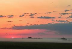 Sunrise over the Fog Bank (clarkcg photography) Tags: morning red orange sunlight yellow fog clouds sunrise dawn spring day purple fogbank