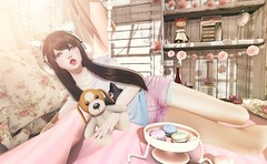 383 ( Nekotto ) Tags: pillows nana sallie milktea tsg ayashi no21 amala vco halfdeer serenitystyle vincue weloveroleplay suicidedollz sanarae lilbugposes