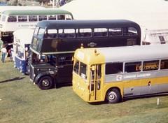 LYF 430 (markkirk85) Tags: new bus london buses country transport iv regal 430 aec lyf metrocammell 121951 lyf430 rf79
