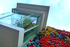 MTG Napier (gec21) Tags: newzealand art architecture panasonic nz napier hawkesbay 2015 dmctz20