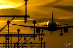 B738 (Ricard Snchez Gadea) Tags: sunset plane canon airplane airport bcn sigma catalonia landing 7d puestadesol aeropuerto catalua avion postadesol avio aterrizaje elprat canonistas eos7d canoneos7d aterrant 150500 aeropuertobarcelona canon7d sigma150500 7dcanon 150500mmf563dgapooshsm