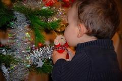 Chrismas kiss (j_lebloch) Tags: christmas kid kiss noel enfant bisous