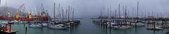 Lyttelton Harbour panorama (Maureen Pierre) Tags: newzealand christchurch panorama weather misty harbour lyttelton