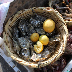 oyster moon (kexi) Tags: africa stilllife yellow canon square march raw basket fresh lemons morocco maroc seafood oysters mussels 2015 maroko instantfave oualidia