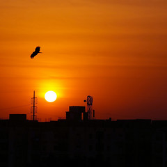 SUNSET (FarhanZia) Tags: sunset orange sony nex 5t 55210