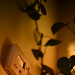 160110-thermostat-climate-control-indoor-plant.jpg