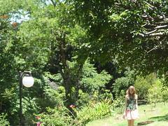 27/366 Self and nature (JessicaBelotto) Tags: flores verde luz sol nature self poste plantas foto ar natureza eu days well honey grama always bem ao fotografia projeto árvore livre cabelo saia fotografando fotografico 366 loiro i 366daysofhoney 366diasnoano