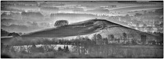 Pewsey Vale - Frosty Morning (Andy J Newman) Tags: morning england bw mist misty landscape dawn nikon frost unitedkingdom hill vale gb bandw wiltshire pewsey goldcollection d7100 silverefex stantonsaintbernard