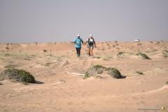 3-Oman-Desert-Marathon-Day-6_6761