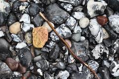 o\ (Anti-Heart) Tags: white black wet water rain stones rainy stick