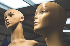 38/366 - The Model (efsb) Tags: mannequins heads antiques project365 38366 project366 dagfields 2016yip 2016inphotos