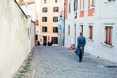 Follower. (If not NOW... when?) Tags: city travel light sea canon europe euro slovenia piran makroplanart250 5d3 makroplanar502ze 5diii
