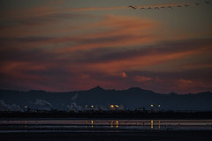 power (ffoster) Tags: sunset sky birds landscape powerplant saltonsea