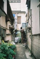 (sabamiso) Tags: tokyo   leicam4 fujicolorc200 voigtlandernoktonclassic