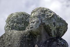 Embrace (Arcus Cloud) Tags: sculpture face statue rock outside moss hug sandstone outdoor australia rockface fungus nsw cuddle lichen geology centralcoast embrace bacteria parklands sculpturepark rocksculpture cyanobacteria kariong rockstatue compositeorganism kariongparklands