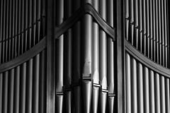 Pipe Organ (Ruairidh an Dorcha) Tags: bw monochrome cathedral pipe nelson organ