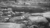 B&W-00700 (alessandro.polla) Tags: bridge blackandwhite bw italy mountains ice nature water river landscape woods iced woodbridge tentino