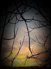 Couleurs du soir (cordier38) Tags: soir coucherdesoleil