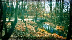 Take me away to this peaceful  place away from all this..... (gwendolyncamasta) Tags: autumn trees fallleaves bench stream pennsylvania bridges foliage colorfulautumn grantville lebanoncounty levitzpark