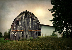 Lean (MEaves) Tags: barn illinois rust decay structure weathered toned textured ruralamerica
