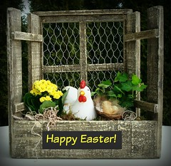 Happy Easter everyone! Especially to all my flickr friends! (Deejay Bafaroy) Tags: flowers chicken easter ivy blumen huhn coop ostern henne hen henhouse efeu happyeaster froheostern hhnerstall ostergesteck easterarrangement