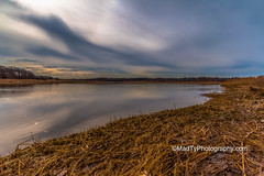 Neponset River Marshes (B.MacLean) Tags: water yellow boston clouds photoshop canon landscape photography photographer waterfront ngc wideangle marsh bostonma canoneos dorchester marshland lightroom neponsetriver canonefs1022mm canonefs1022mmf3545usm movingclouds neponset brianmaclean canoneos50d canon50d miltonlanding newenglandcolor wideanglelandscape madtyphotography madtyphotographycom minimalistlanscapes